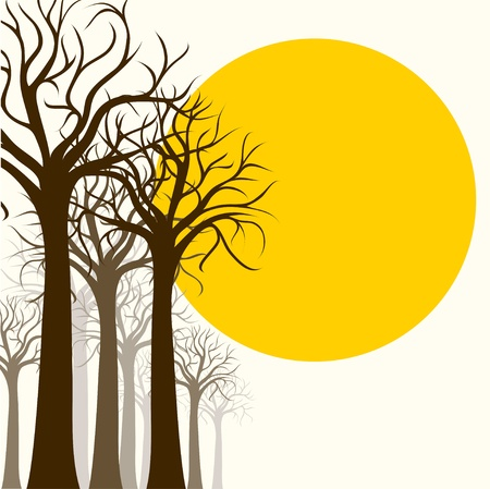 silhouette trees Stock Vector - 19315641