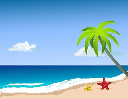 starfish beach: Palm tree on the beach, starfish on the sand. Vector image. Illustration