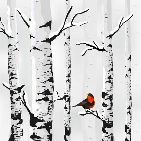 Abedul en la nieve, tarjeta de invierno en vector