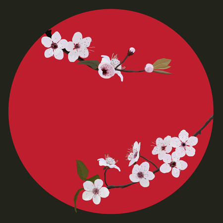 Branch flower blosoom on red sun, isolated Vector