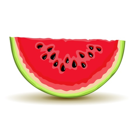 Slice of watermellon in vector Vector