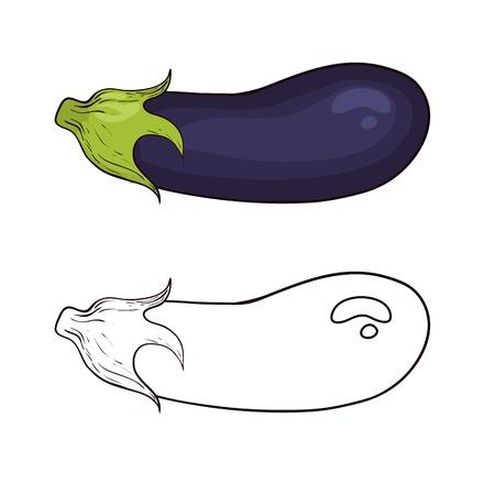 Vector eggplant