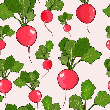 Radish design seamless pattern Illustration