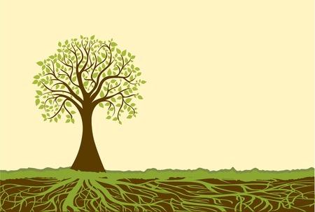 arbol con raices: Vector del árbol