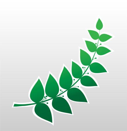 laurel branch, symbol of victory, vector image