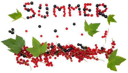 berries, black and red currant Flatley on a white background, berries up, lettering summer