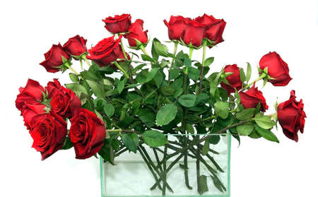 a bouquet of large red roses in a glass vase on a white background