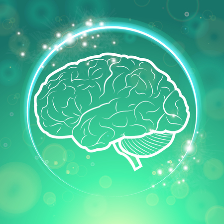 neurology: Human Brain Neurology Anatomical Concept Vector Illustration Illustration
