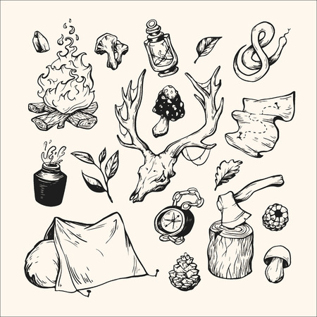 wild berry: Camping and traveling. Hand drawn vector elements. Water bottle, campfire, tent, compass, axe, map, berries, leaves, mushrooms, antler. Illustration