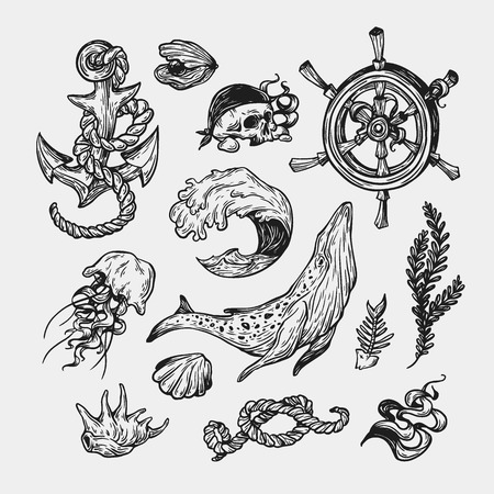 nautic: Nautical set. Sea set. Marine collection. Sea elements, underwater world. Fishes, shells, pirate elements, ship elements, anchor, helm, whale, wave.