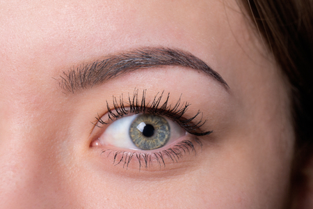 pull out: Expressive significant eye perfect shape of eyebrow after correction beauty salon pull out have hair thinned out care review of the eyes light brown coloring natural procedure. Young clean part face
