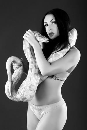 squirm: Black & white monochrome vintage photo, Sexy woman is holding wild albino python.