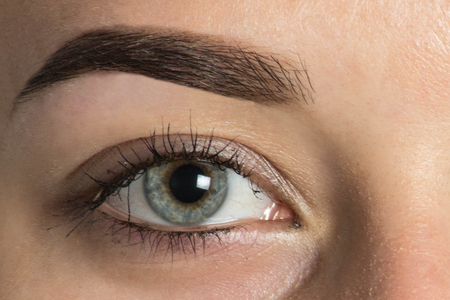 Expressive, significant eye, perfect shape of eyebrow after correction, beauty salon, pull out, have hair thinned out, care, review of the eyes, light brown coloring, natural, procedure. Young, clean Stock Photo - 88413699