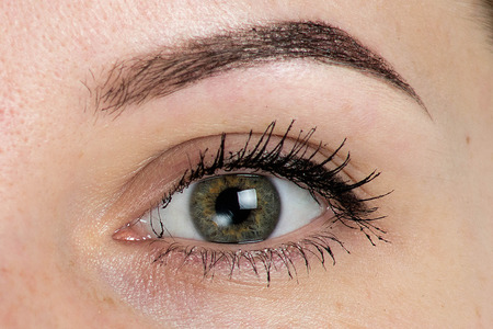 Expressive, significant eye, perfect shape of eyebrow after correction, beauty salon, pull out, have hair thinned out, care, review of the eyes, light brown coloring, natural, procedure. Young, clean Stock Photo