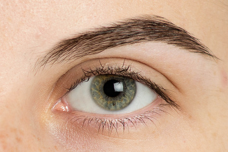 Close up photo of man big eyebrow shape, brown brow, green grey eye, strictly brave serious look ahead. The procedure to improve vision, optical improvement retinal. Laser correction myopia, hyperopia