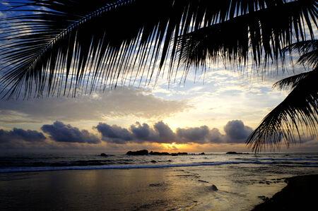 Sunset on the beach in Sri Lanka                                photo