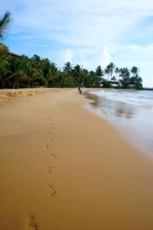 excursions: The beach in Hikkaduwa, Sri Lanka                                Stock Photo