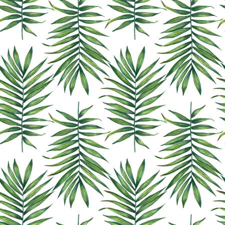 Tropical pattern with green palm branch. Hand drawn watercolor floral seamless pattern. Foto de archivo