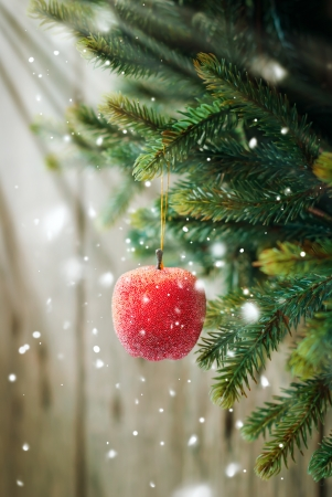 Christmas Composition with Red Apple  on the Branch on Wooden Background
