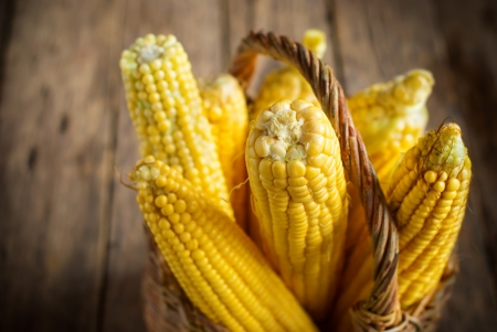 Fresh Corn in Basket on the wooden background, selective focus, horizontal image photo