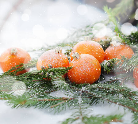 New Card with Tangerines Decorated as Fir-tree Toys.  Branch of Coniferous on White Snow photo