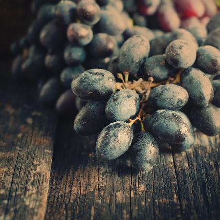 uvas: Racimo de uvas azules en viejo fondo de madera. Estilo y vintage Imagen virada