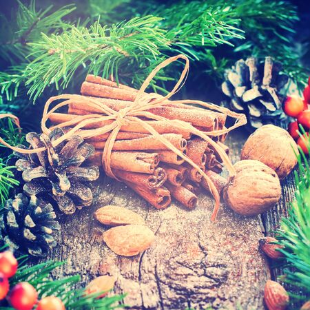 berryes: Christmas Card. Bunch with Cinnamon Sticks tied up by a Rope, Fir Tree, Natural Food on a Wooden Background. Toned Stock Photo