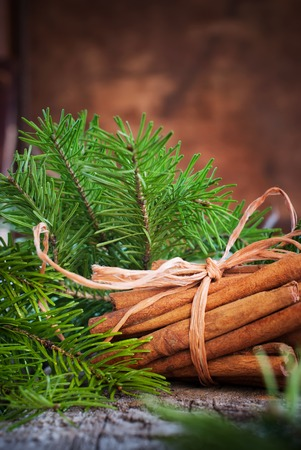 cristmas card: Christmas Card. Bunch with Cinnamon Sticks tied up by a Rope and Branches of Fir Tree on a Wooden Background