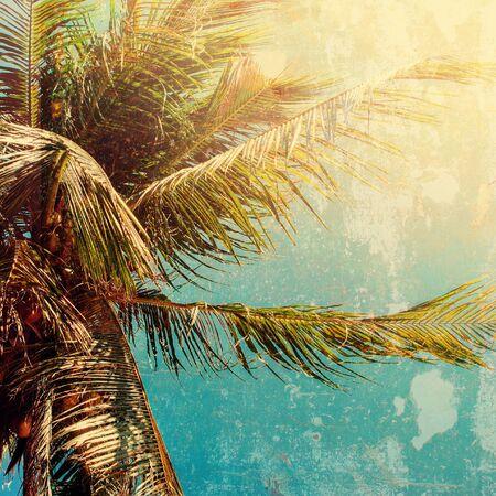 equator: Palm Trees Sun Light Hot Equator Nature Landscape Tropical Background Holiday Travel Design Toned Shabby Vintage Effect Stock Photo