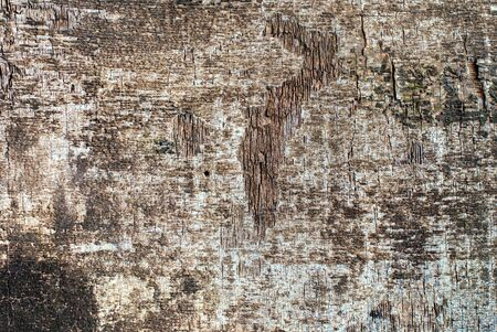 splintered: Old Shabby Wooden Panel Plywood with Cracked Color Paint Textured Background Stock Photo