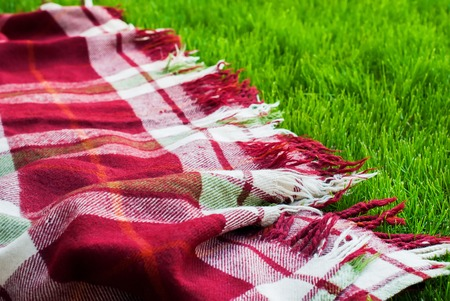 freedom concept: Checkered Plaid Picnic Green Grass Summer Time Background Freedom Concept Stock Photo