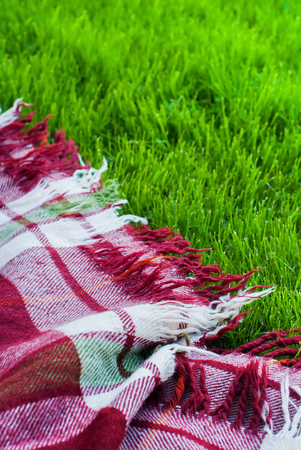 Checkered Plaid Picnic Green Grass Summer Time Background Freedom Concept Stock Photo