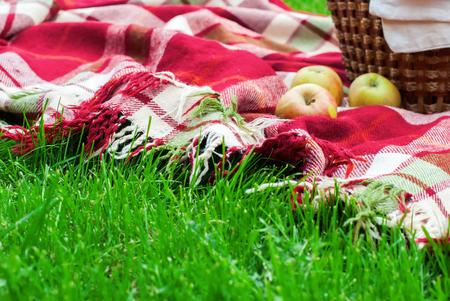 apples basket: Checkered Plaid Picnic Apples Basket Fruit Green Grass Summer Time Rest Background