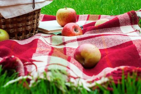 apples basket: Apples Basket Fruit Checkered Plaid Picnic Green Grass Summer Time Rest Background