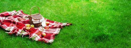 Checkered Plaid Picknick Äpfel Korb Obst Green Grass Sommerzeit Erholung Hintergrund Design Web-Konzept Langformat