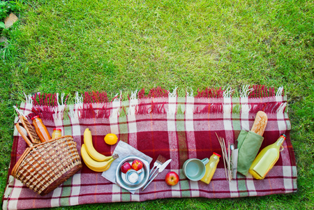 Basket Setting Food Apples Bread Fruit Drink Juice Cheese Pears Banana Checkered Plaid Picnic Green Grass Summer Time Rest Background Stock Photo