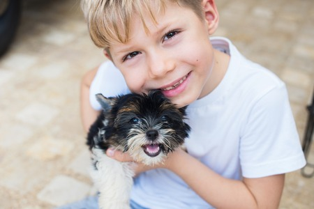 Happy caucasian boy lovingly embraces puppy purebred Biewer Yorkshire terrier pet Small size breed dog long wool Latin name Canis lupus familiaris Origin Germany. Decorative doggie Summer day Stockfoto - 108378580