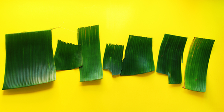 Empty templates for letters from green tropical palm leaves on yellow textured background. Original handmade idea from natural material for summer design