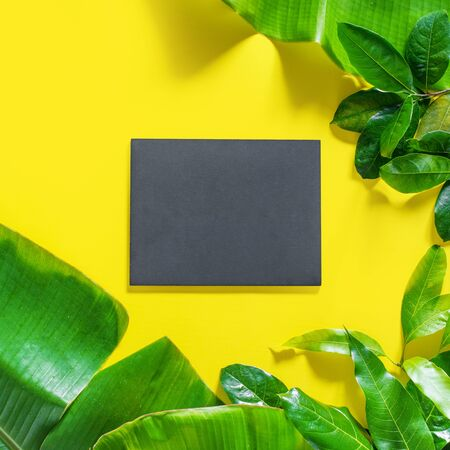 Mock up black wooden blank chalkboard with tropical green leaves on yellow background. Flat lay composition top view. Copy space. Banner