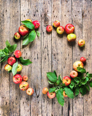 Ripe Red Green Apples Leaves on Wooden Table Background Autumn Harvest Wild Fruits Frame Circle Country