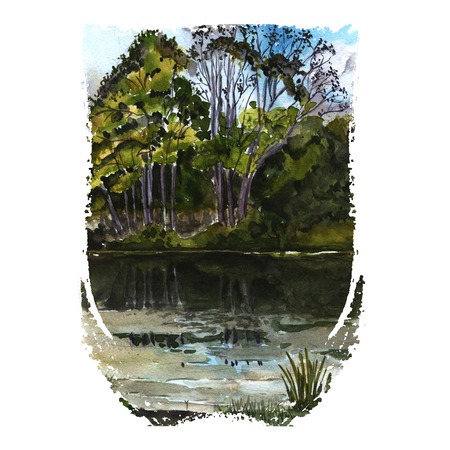 silent: Watercolor illustration of nature - silent lake with trees and bushes on the coast. Hand painting art.