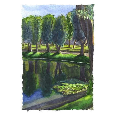 Watercolor illustration of a silent lake in the park, some trees under the sun light. Hand made painting.