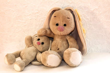 Bunnies on a white background. Plush rabbit toy.