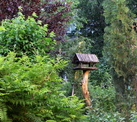 Homemade bird feeder in the spring garden.