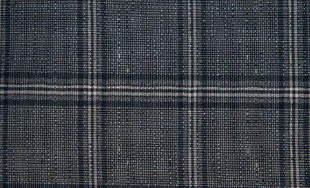 Checkered blue background. The texture of the fabric in the cell. Fashion 2020. Stok Fotoğraf
