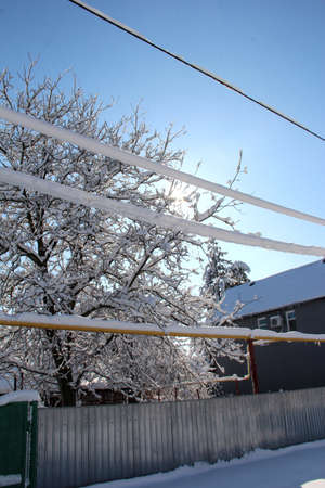 Winter wires. Snow-covered power grids.