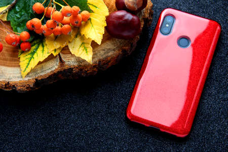 Smartphone red on an autumn background with leaves.