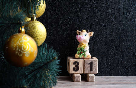 Cow on a sled with the number 31. Christmas background. Stock Photo