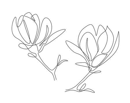 Magnolia flowers in one line art style. Continuous drawing can used for icon, wall art prints, posters, magazine, postcard, emblem, logo. Abstract Vector illustration