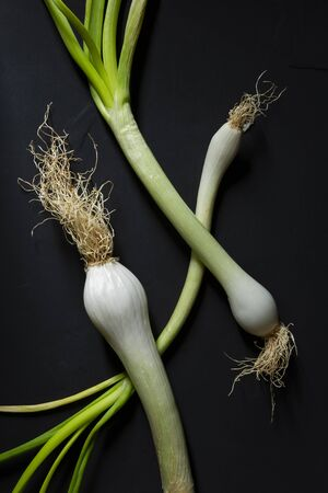 Three white onions. Everything in a dark environment